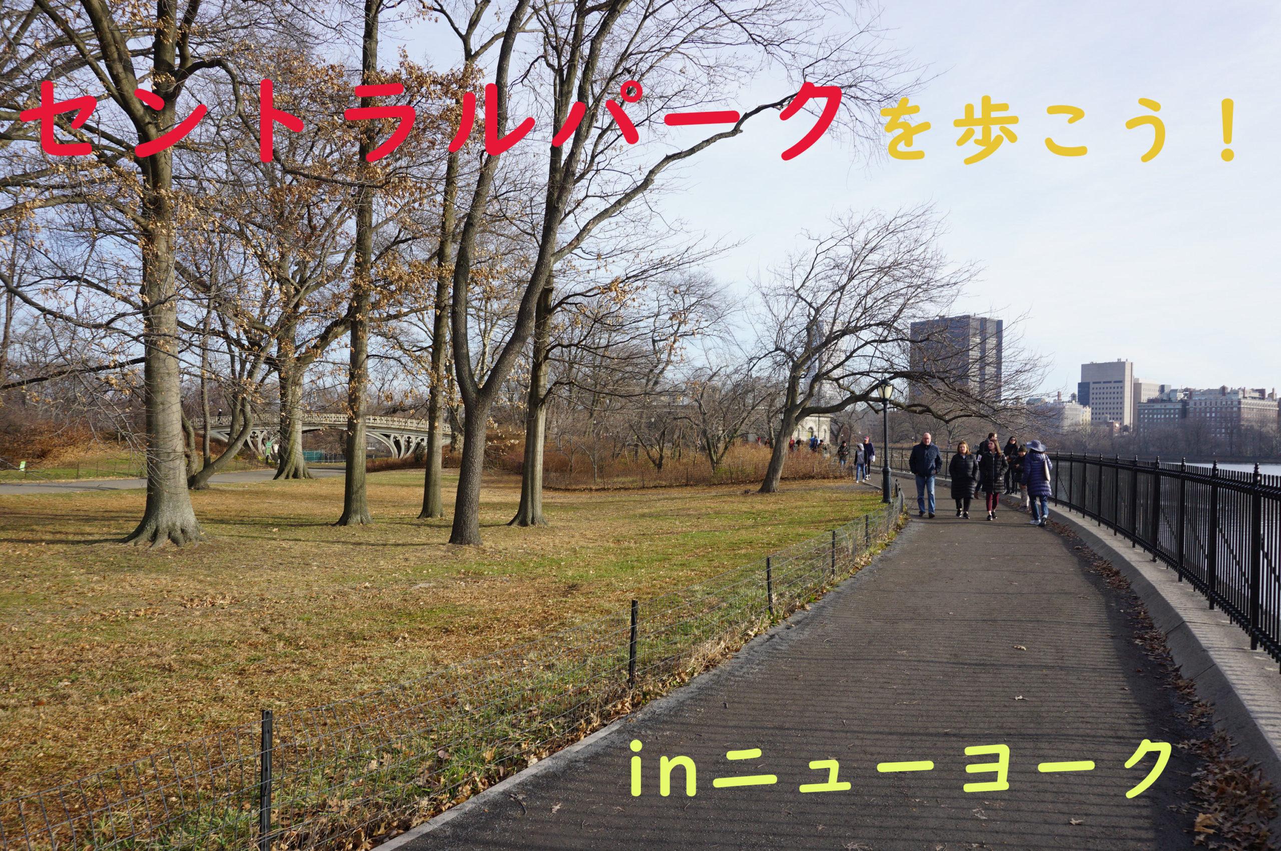 セントラルパークを歩こう